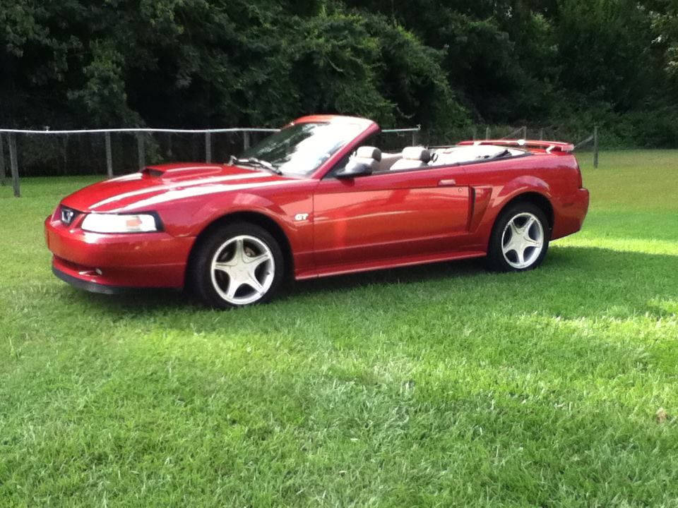 My Car 2001 Mustang Gt Convertible In Laser Tint Red 260 Hp 4 6l V8 Engine Super Fun