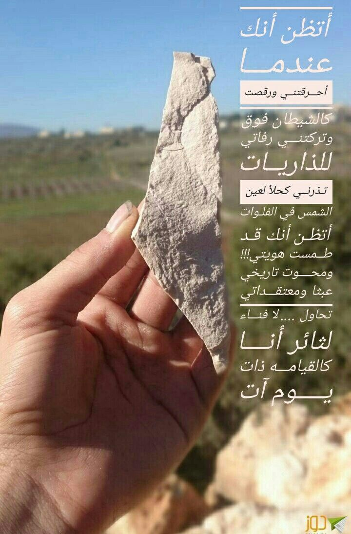 Pin On Palestine
