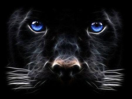 Black Panter Desktop Nexus Wallpapers Jaguar Wallpaper Tiger Wallpaper Black Panther Hd Wallpaper Black jaguar eyes wallpaper