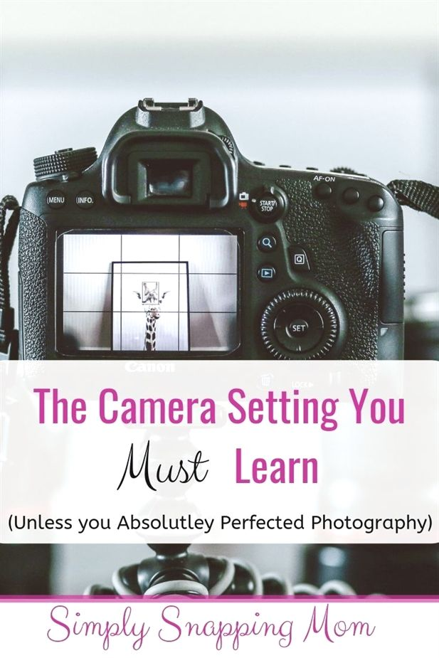 Freelance Photography Jobs Photography Newborn Basket Photography Exhibitions London To Digital Photography Lessons Learning Photography Photography Camera