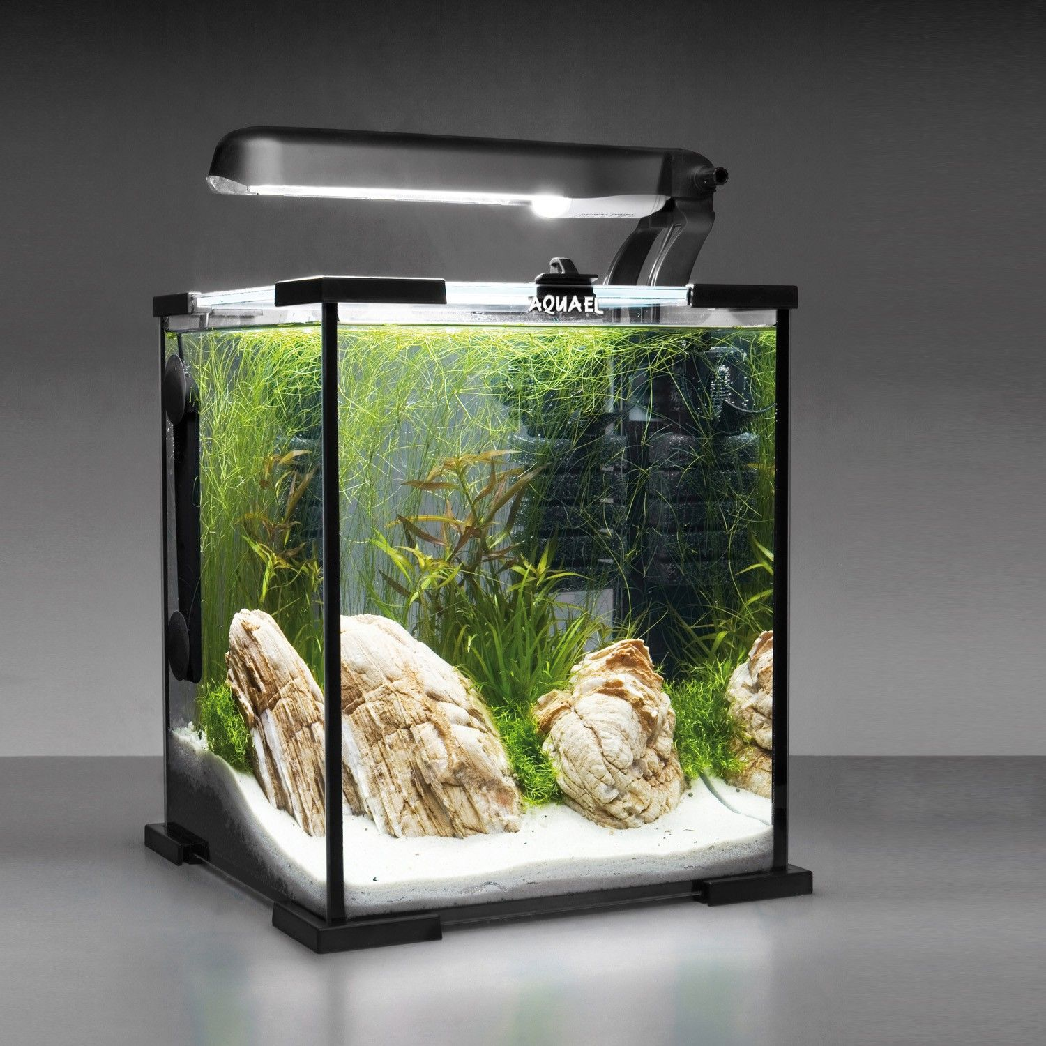 Hanako Koi 4460660 Aquael Shrimp Set Garnelen Aqua545f5daa8adec Jpg 1500 1500 Aquarium Avec Meuble Aquarium Idee Couleur Salon