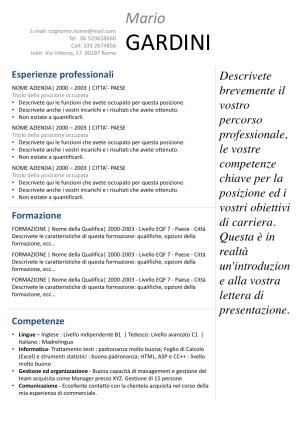 Cv Europeo Modelli Di Curriculum Vitae Gratis Curriculum