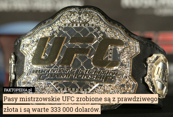 Ufc Championship Belts Are Made Of Real Gold And Are Worth 333 000 Ufc Belt Karate
