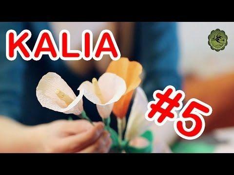 Kwiatki Z Bibuly 5 Kalia Paper Flowers Crepe Paper Flowers Flower Video