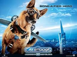 Tamil Dubbed Movies Cats And Dogs 1 Dog Movies Dog Cat Dog Films