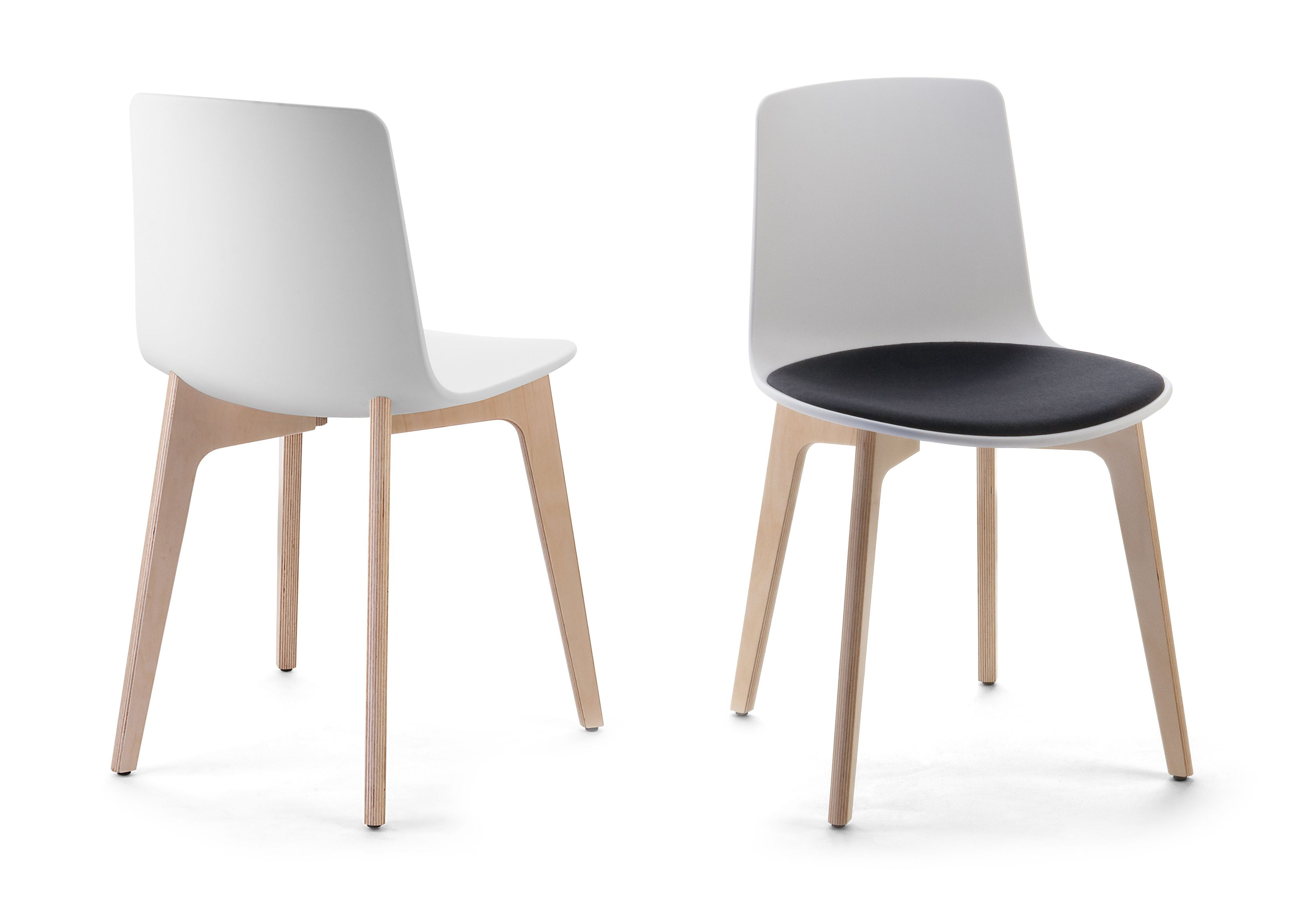 Lottus chair in wood structure and polypropylene frame by Enea