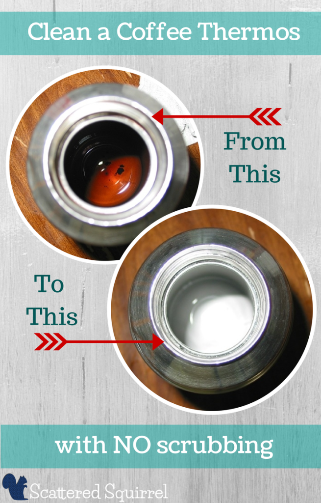 Clean A Coffee Thermos Scattered Squirrel Clean Coffee Stain Coffee Thermos Coffee Stain Removal