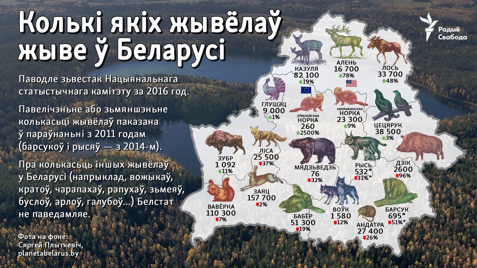 Pin Ot Polzovatelya Helen Chewska Na Doske Belarus Belarus