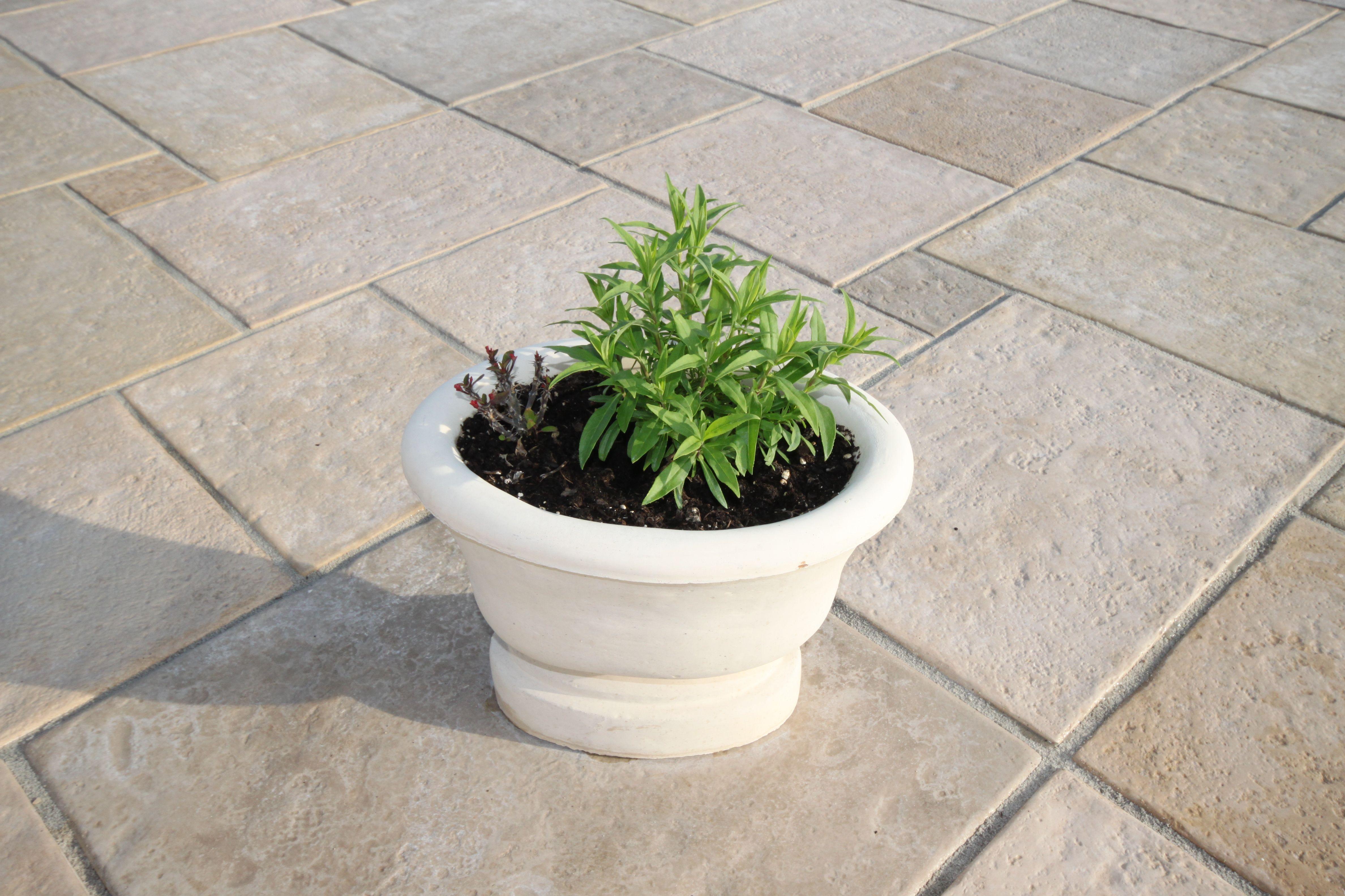 Incroyable De Vasque De Jardin Concept