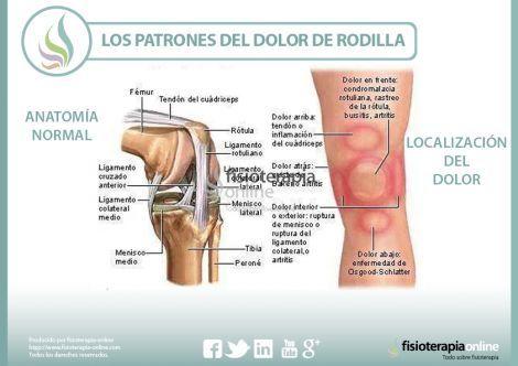que es la rodilla del cuerpo humano