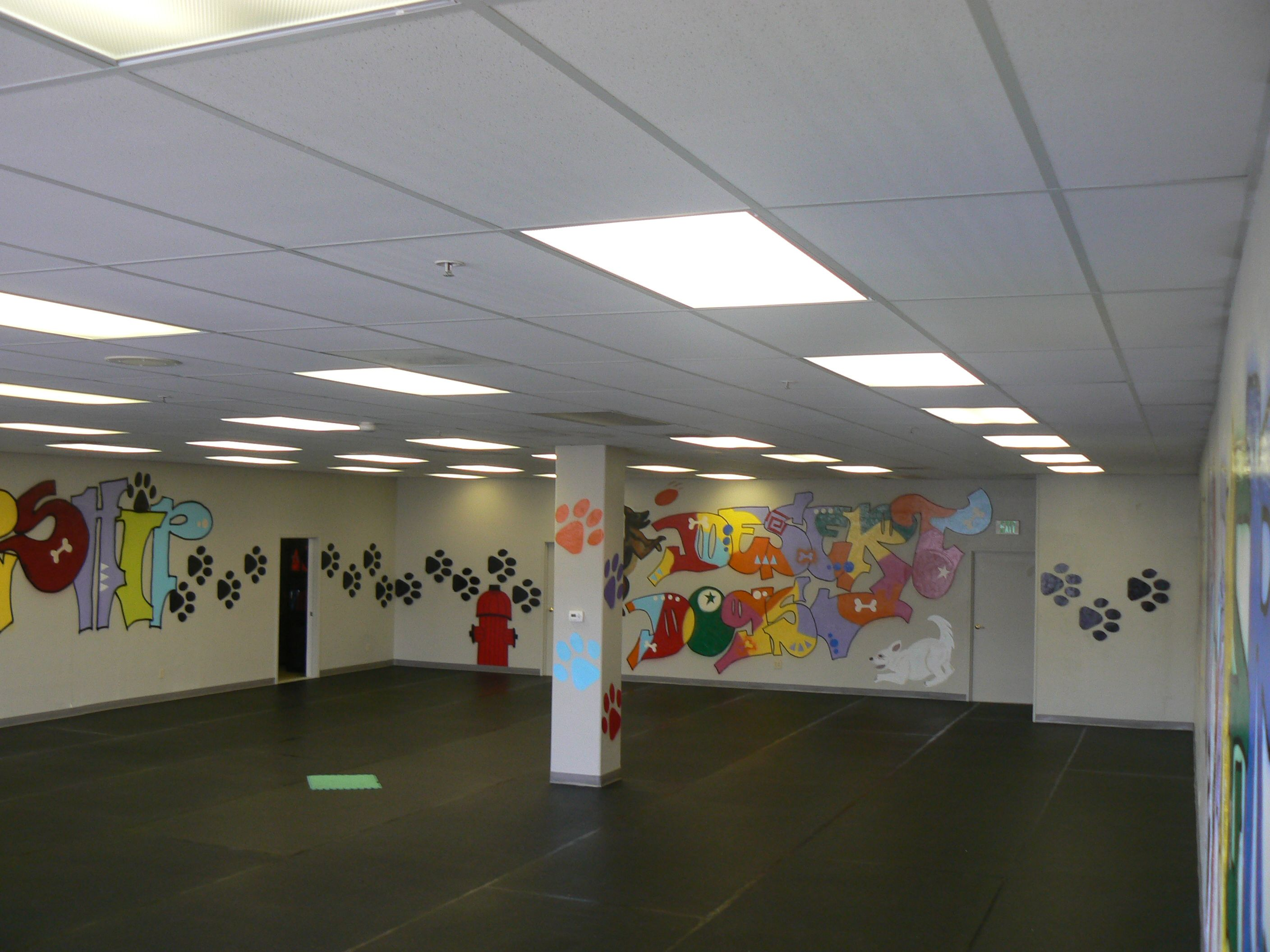 Rolled Rubber Flooring Used At Desert Dogs Training Facility