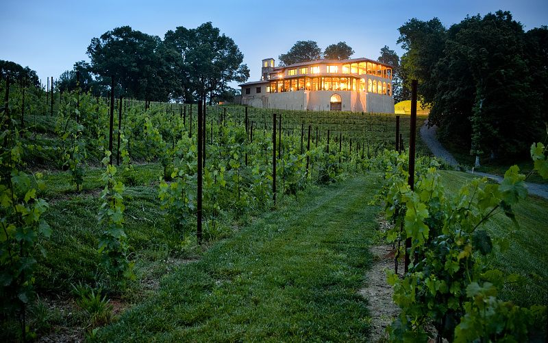 Wedding Venues (With images) Winery, Vinyard