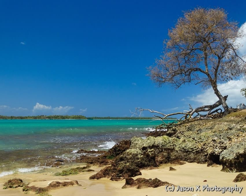 Only in Tobago, you can get such beautiful views!  Photo Location: Buccoo Bay, Tobago.   Image Credit: Jason X Photography  #Tobago #Trinidad #TrinidadAndTobago #Caribbean #POTD #PhotoOfTheDay #TobagoBookings #Buccoo #BuccooBay #BuccooBayTobago #BuccooTobago #Beach