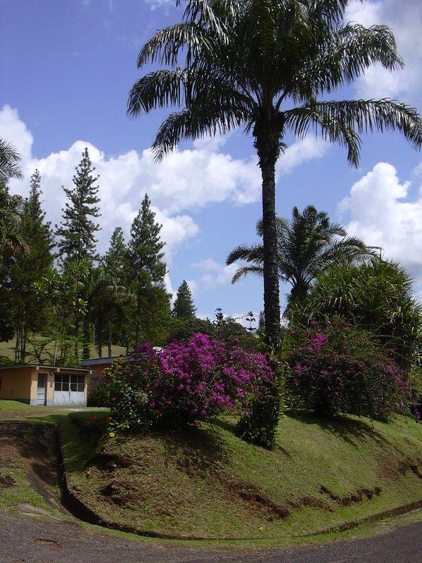Gabon Librevile