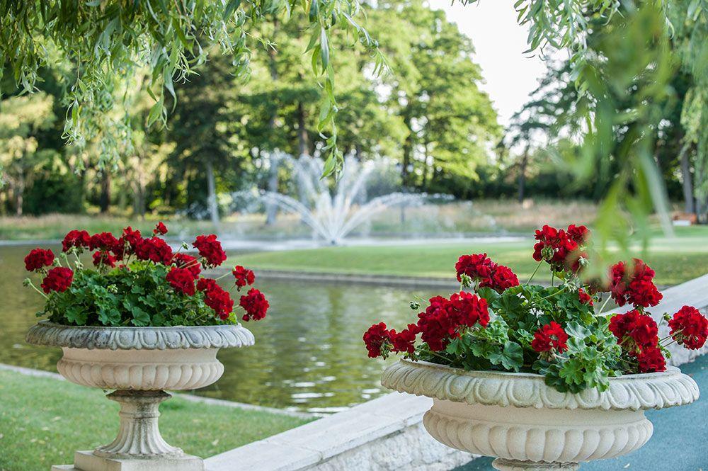 Chateau du Coudreceau Estate Rear Lawn & Roses - www.cducestates.com #ChateauduCoudreceau #CduCEstates #Estate  #Chateau #Roses #Fountain