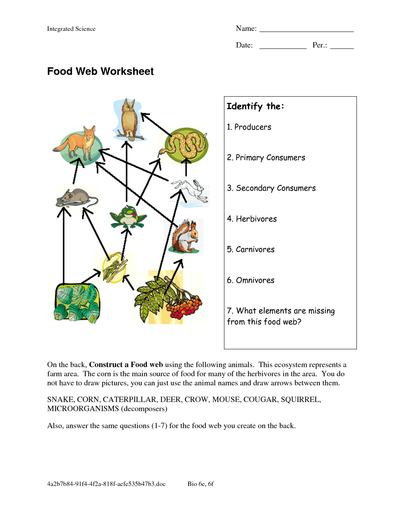 Food Web Worksheets Food Web Worksheet DOC Food web