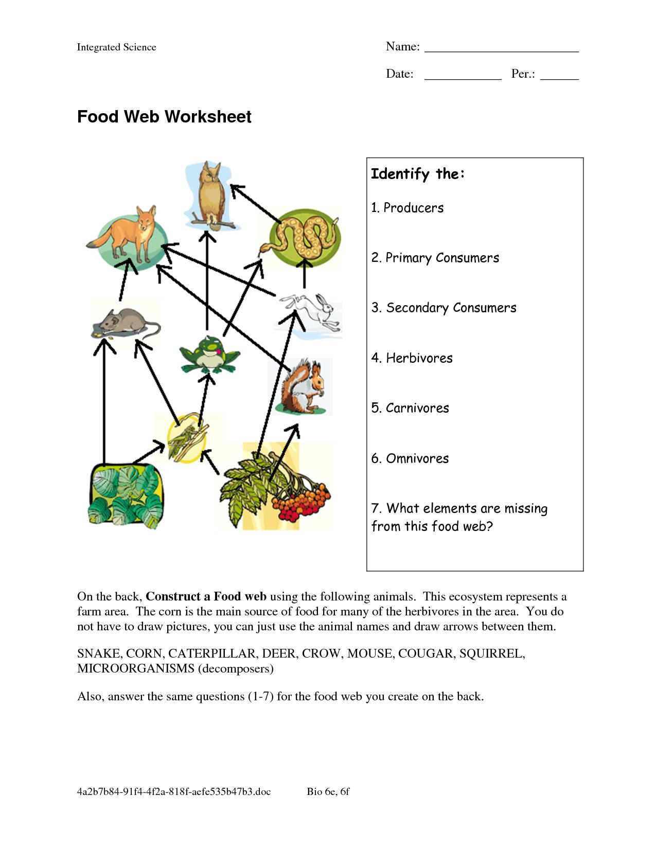 Worksheets Food Chains And Food Webs Worksheet food web worksheets worksheet doc interesting doc
