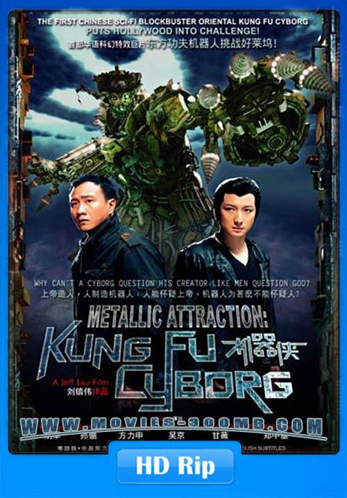 kung fu killer 2014 (hindi dubbed) watch full movie online