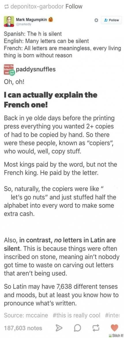 Pin By Alli Kirkman On History Tumblr Funny Funny Quotes Words