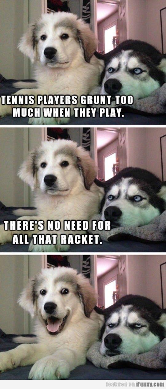 Untitled Dog Jokes Dog Memes Clean Dog Puns