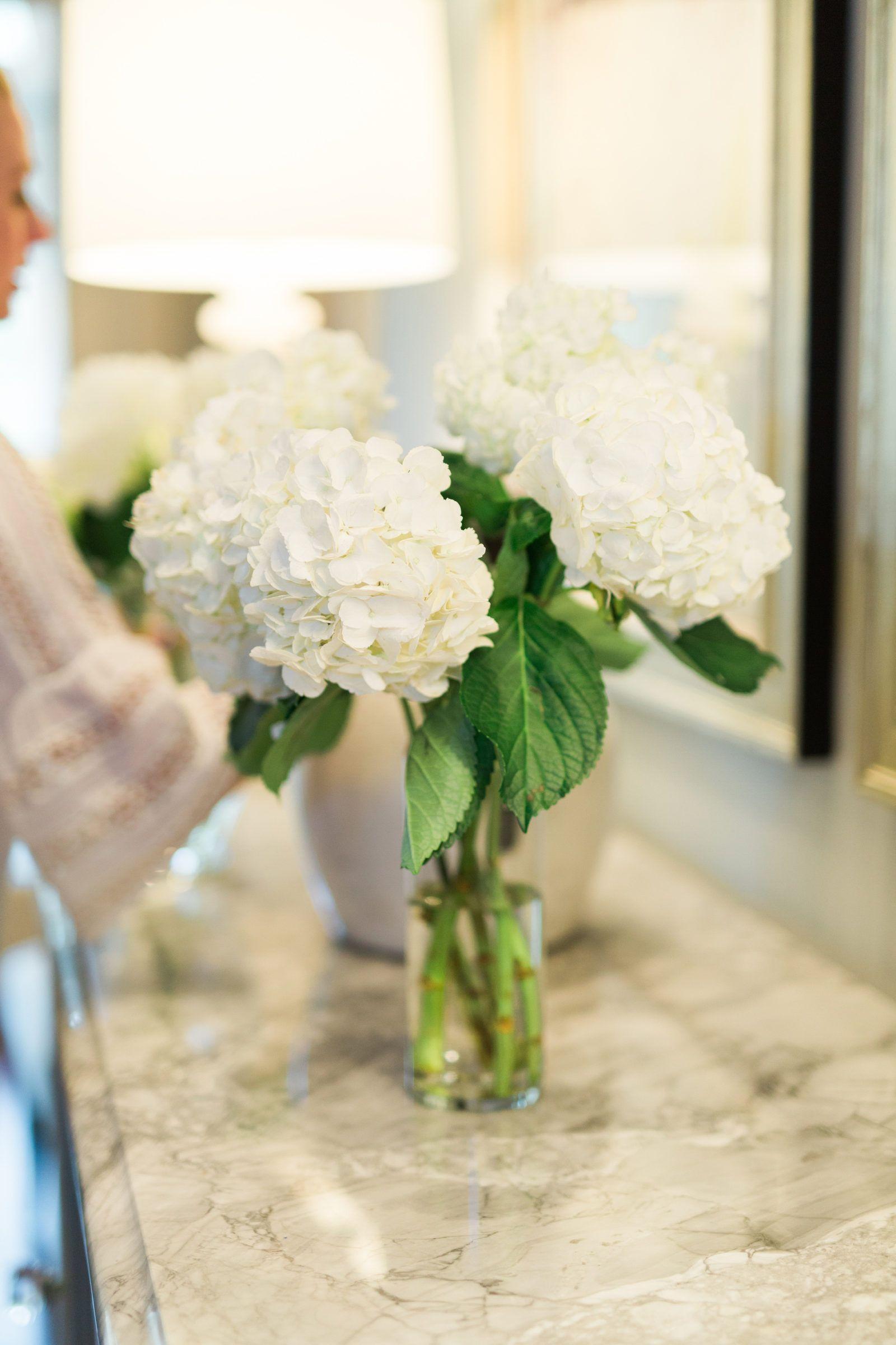 3 Tricks Prevent Fresh Hydrangea Wilting Hydrangea Drooping