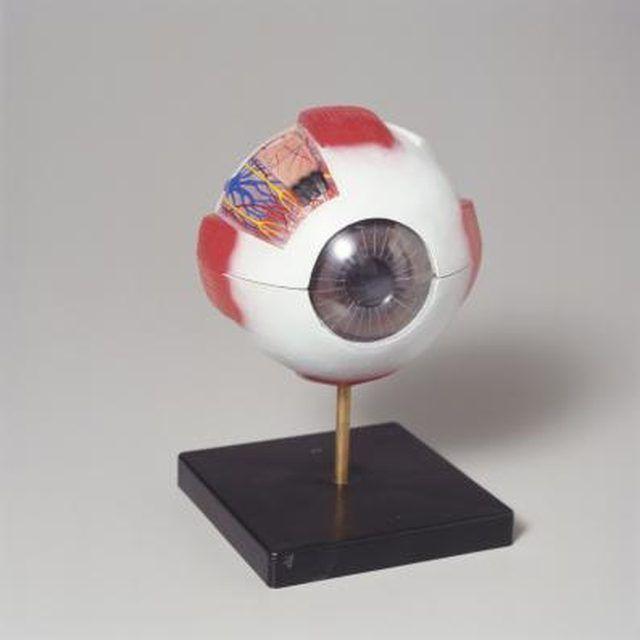 How to Make a Model Eyeball Using a Styrofoam Ball Models - küchenarbeitsplatte online bestellen