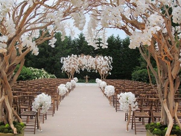 Gorgeous tree branches with white flowers make for an elegant and rustic wedding aisle decor