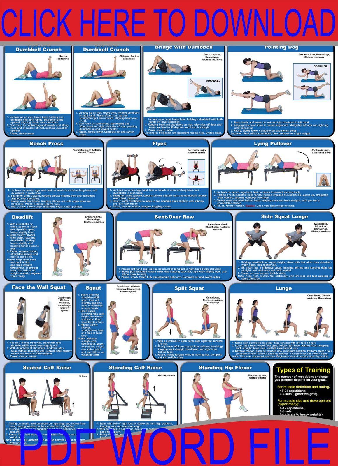 dumbbell workout workouts pinterest