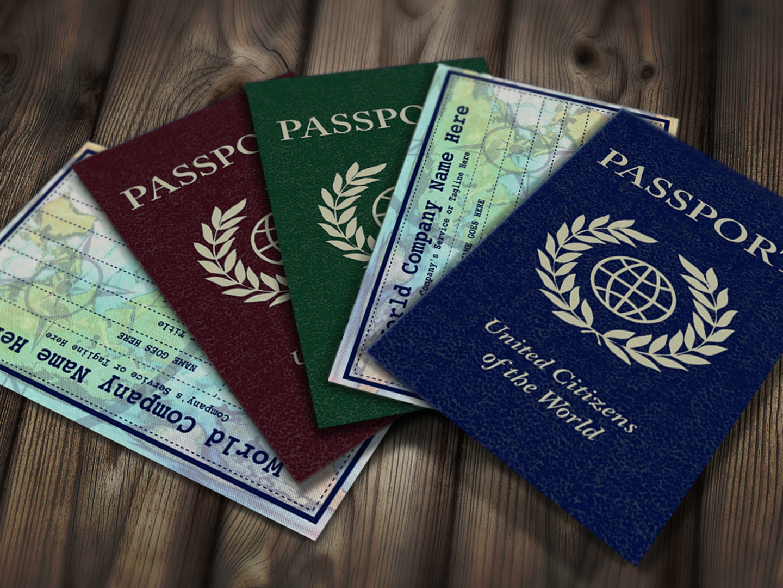 Passport business card market me pinterest business cards passport business card templates colourmoves