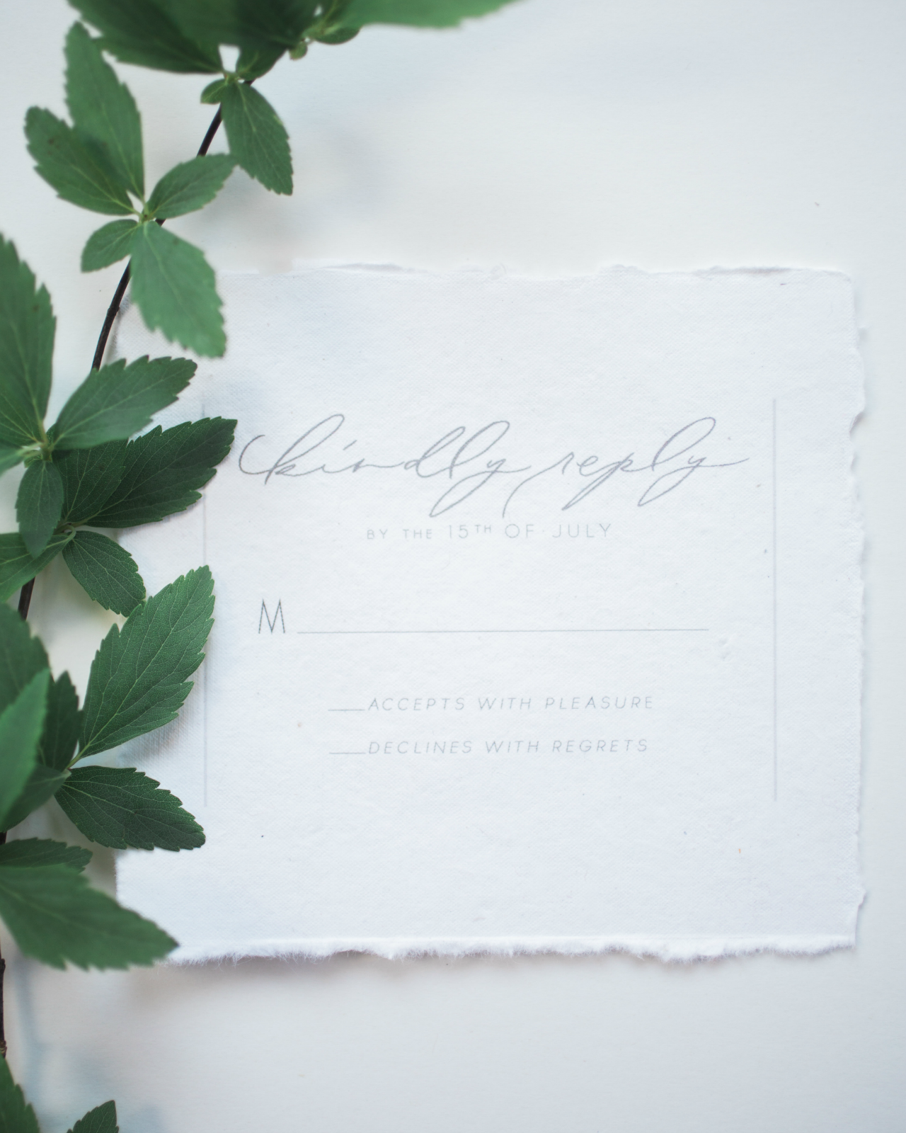 Ethereal Vellum Wedding Invitations Invitations Calligraphy And