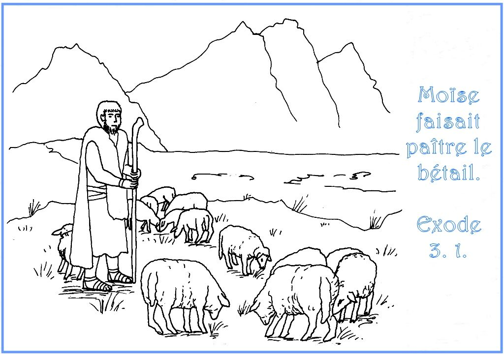 http://www.biblenfant.org/Coloriages/coloriage_Moise_berger.jpg