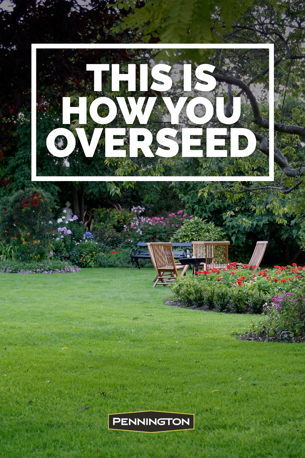 How To Overseed Or Reseed Your Lawn In 2020 Lawn And Landscape