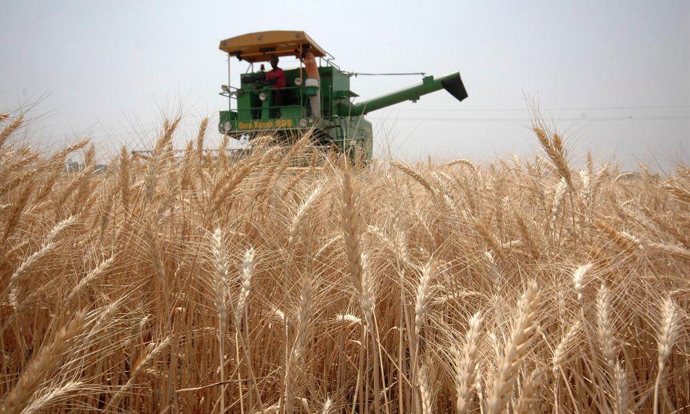 超級農業公司「地獄聯姻」 奪全球60%種籽自主權 - The News Lens 關鍵評論網