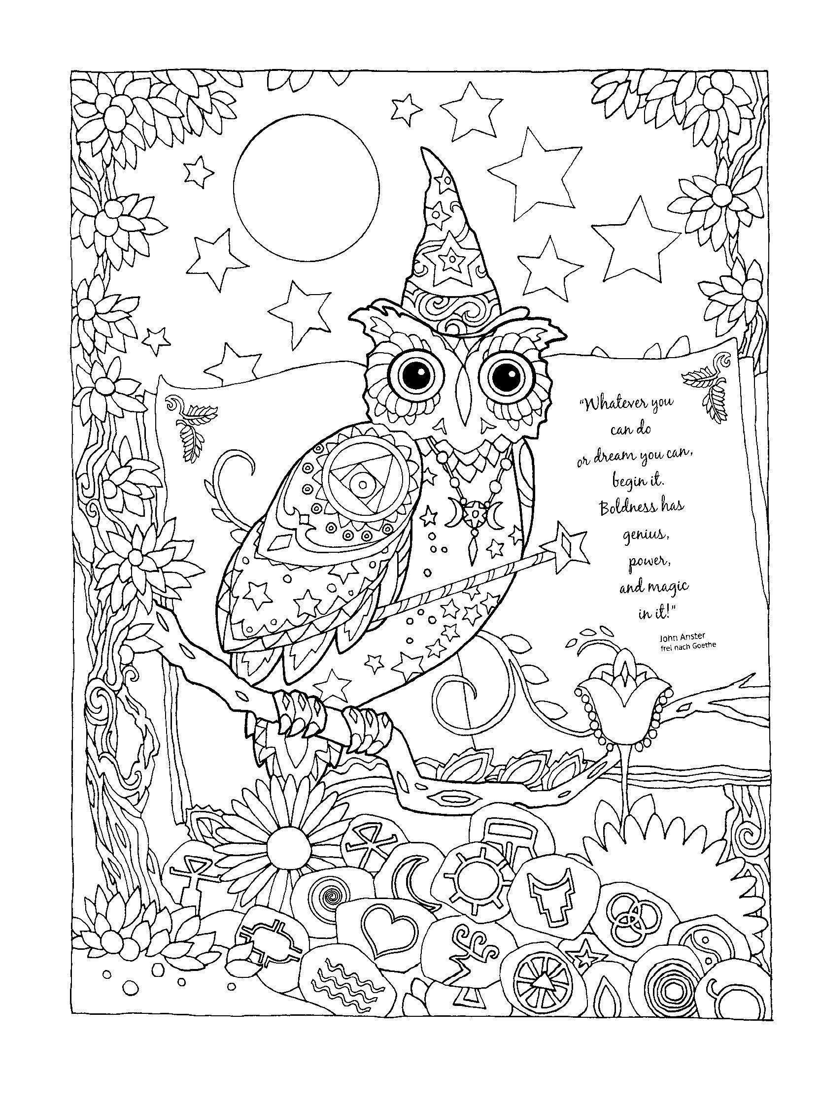Pin de sue ann en adult coloring books   Pinterest
