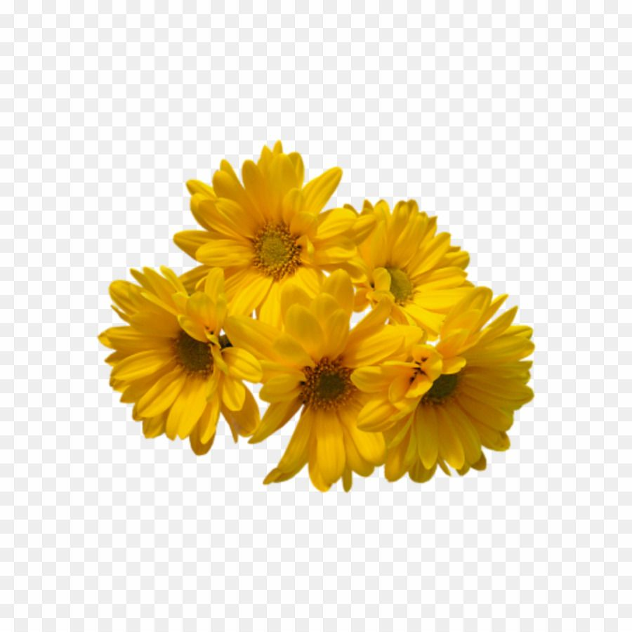 Transparent Background Yellow Flowers Png Flower Bouquet Clipart Yellow Flowers Flowers Bouquet Flowers