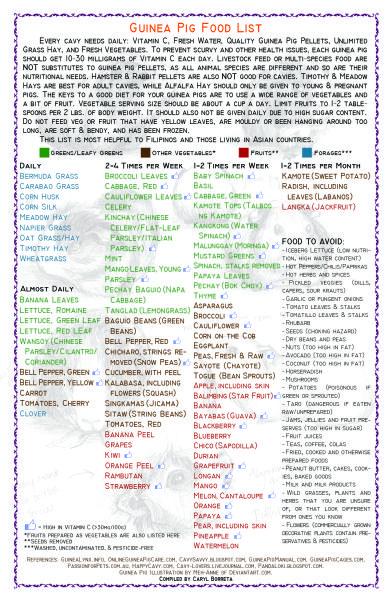 piggie food list by crl