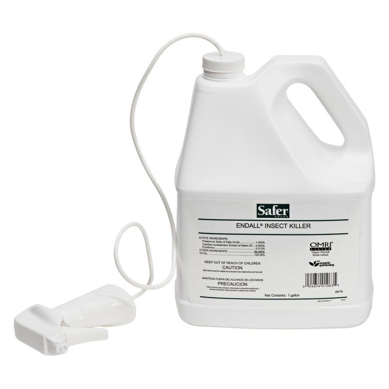 Safer Brand EndALL 1 gal. Ready-To-Use Insect Killer - 5102GAL