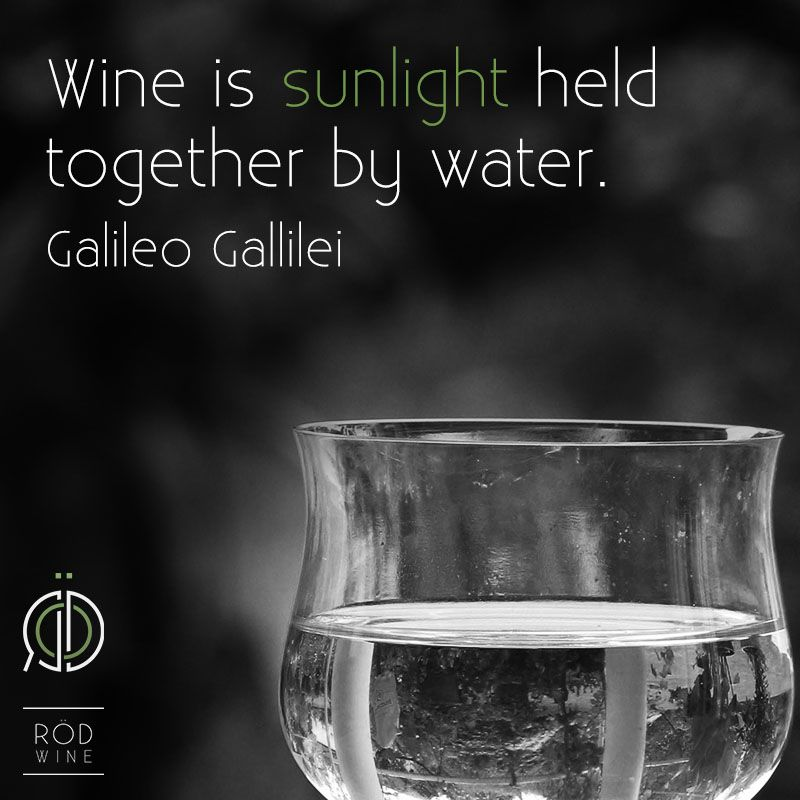 Luxury wine sunlight summer sun water galileo quotes drink For Your Plan - Contemporary sunwater Luxury