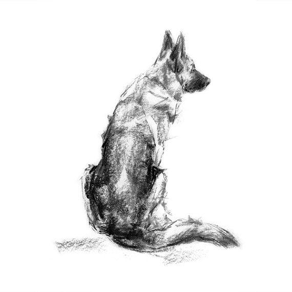 german shepherd dog sitting fine art dog print by paintmydog