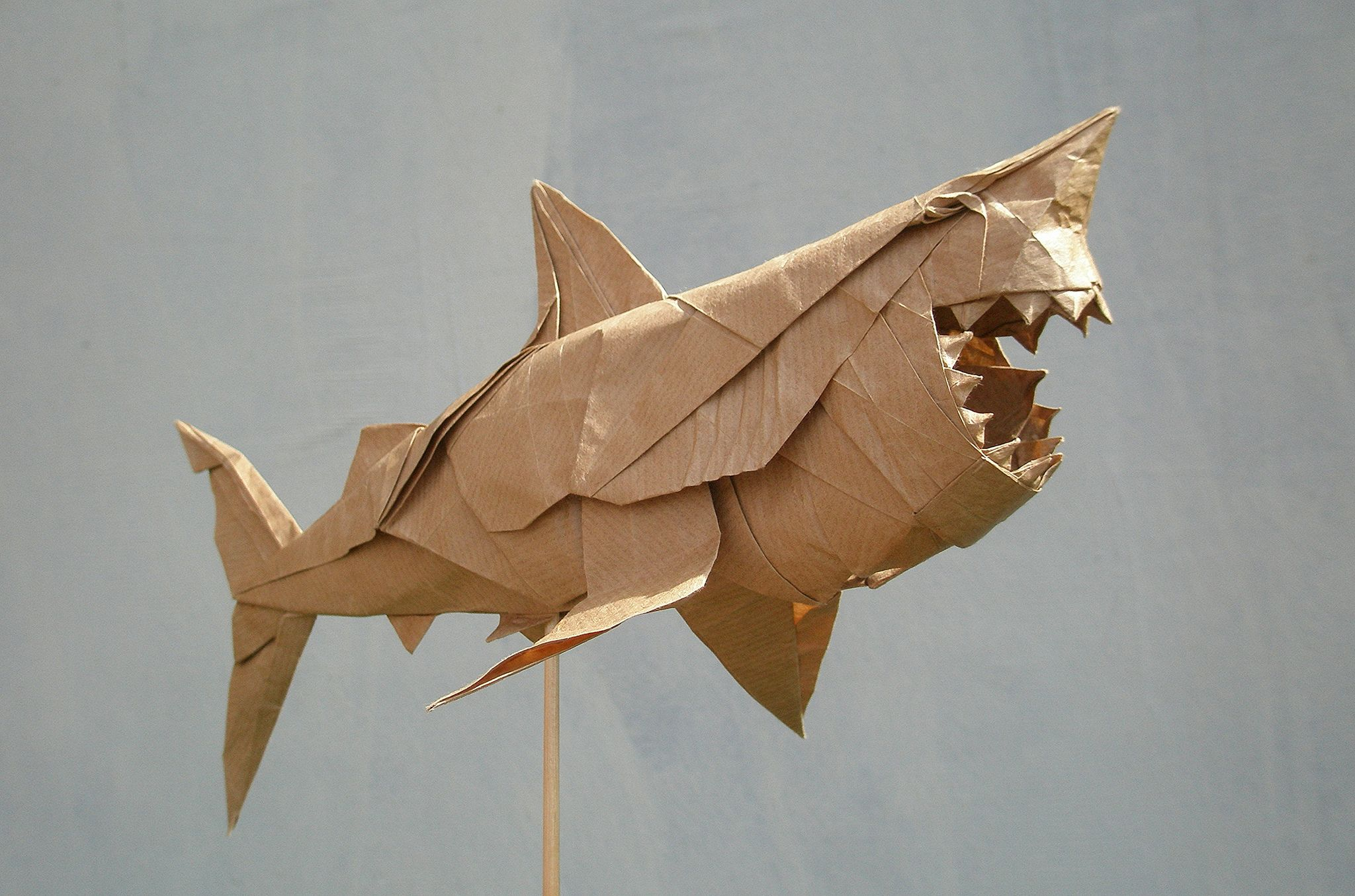 Great White Shark By Nguyn Hng Cng Folded By Artur Biernacki