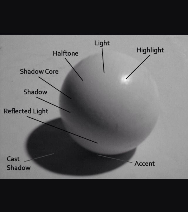 this diagram is great in showing how to shade in a sphere creating a realistic shadow and highlight helps in understanding where the light and dark areas