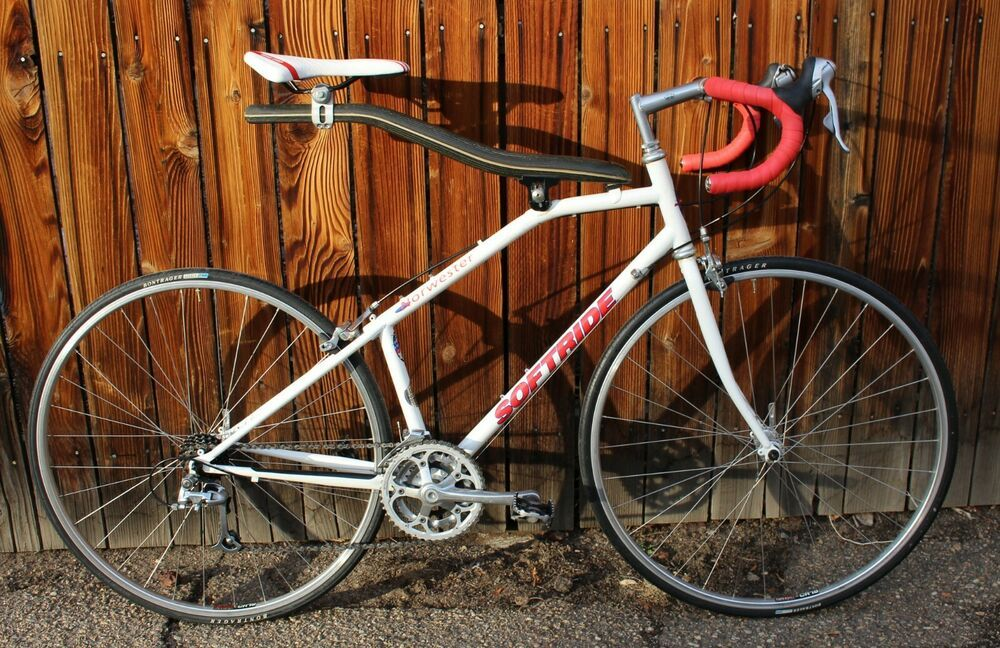 Lynskey R 240 Sport Xl Titanium Road Bicycle Roadbike Titanium