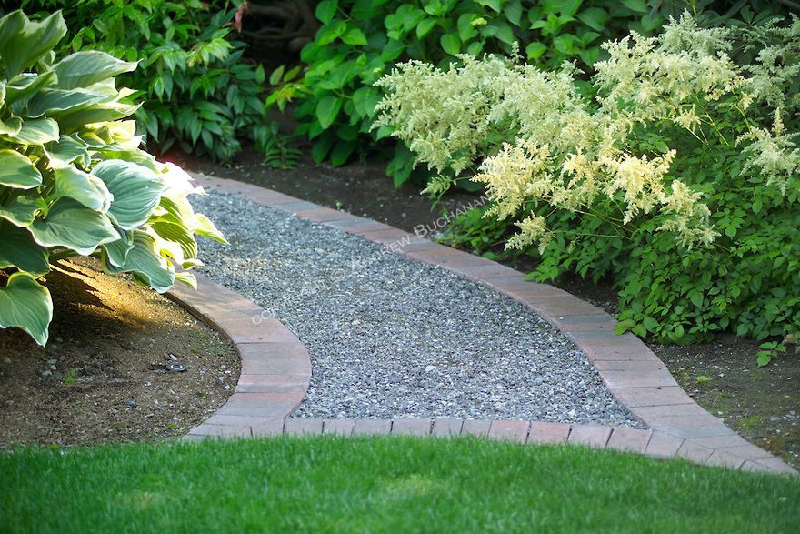 A Shallow Focus Close Up Vignette Of A Curved Curving Brick Edged Gravel Path Edged With A Spray Of White Astilbe Flower Garden Paths Garden Stones Stone Path