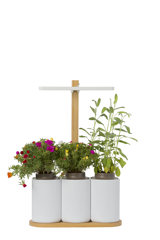 0d4c333d2c61f48cbcfe59368157a40c Frais De Deco Jardin Design Conception