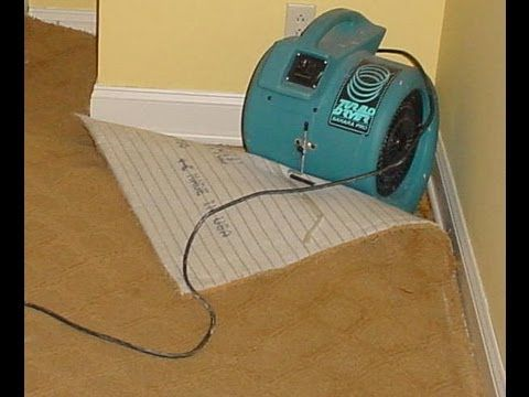 Best Way To Dry Wet Carpet After Flood Home Plan