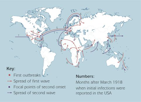 a look at the infamous 1918 spanish influenza outbreak Summary: the influenza pandemic of 1918-20 is recognized as having generally taken place in three waves, starting in the northern spring and summer of 1918this pattern of three waves, however, was not universal: in some locations influenza seems to have persisted into or returned in 1920.