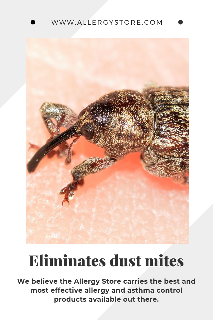 Demite Laundry Additive Eliminates Dust Mites In Bedding And