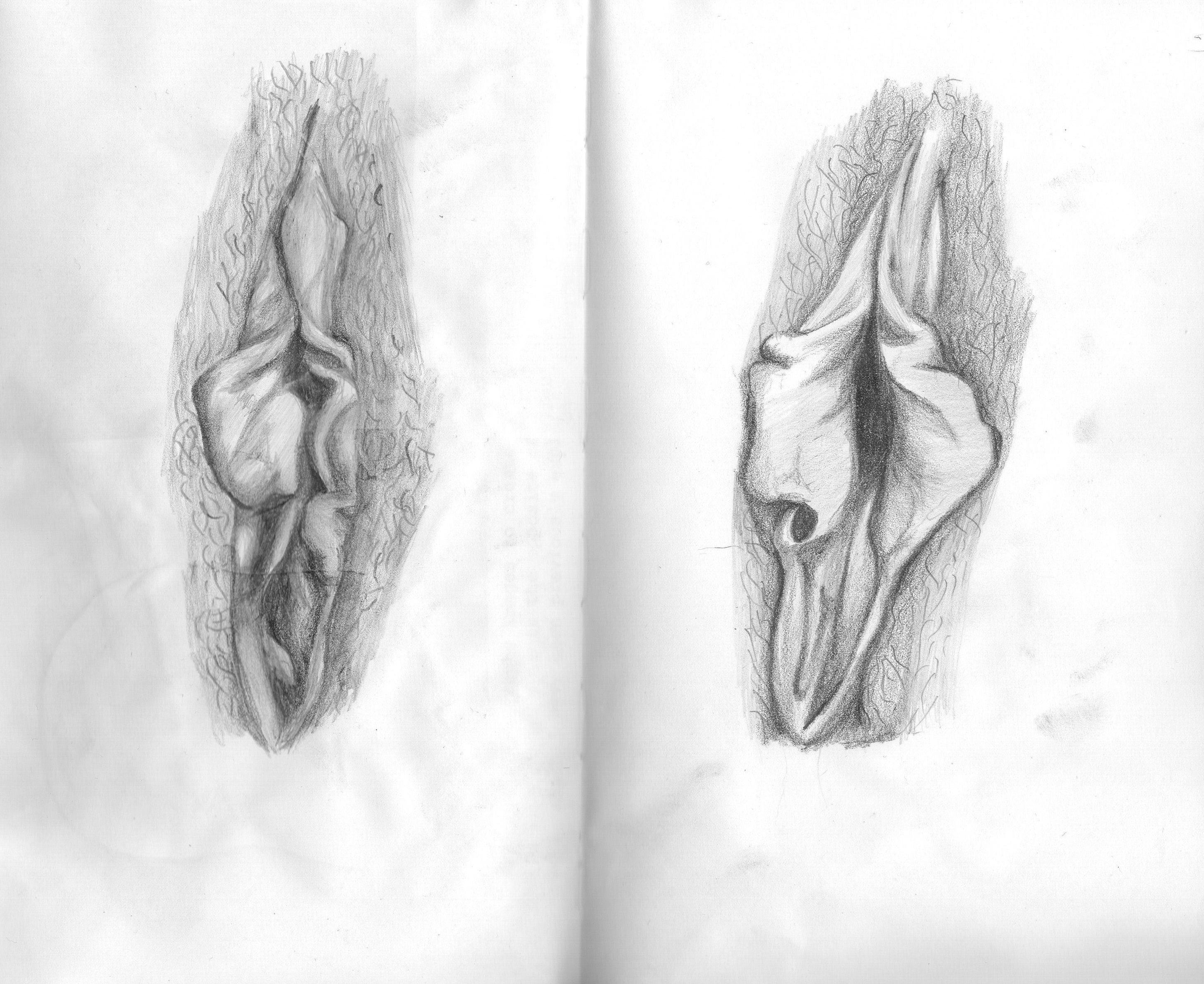 Vagina Vulva Lapel Pin