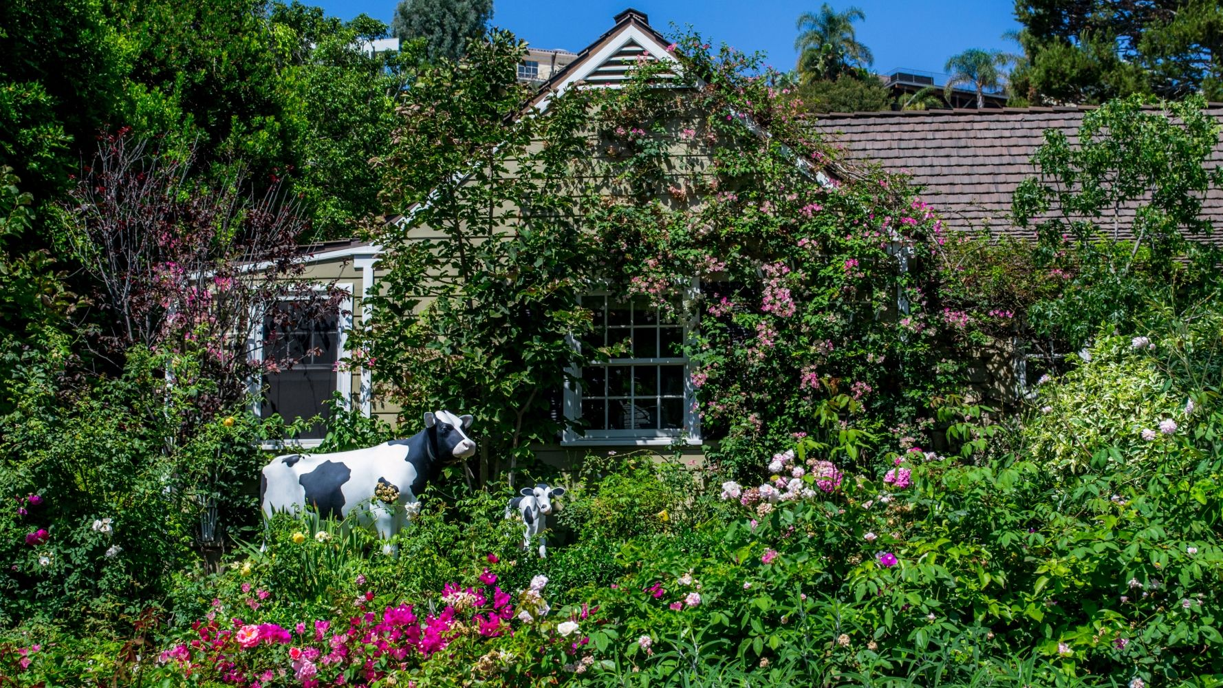 landscape and garden design flowers cow houses design homes landscape - Garden Design Usa