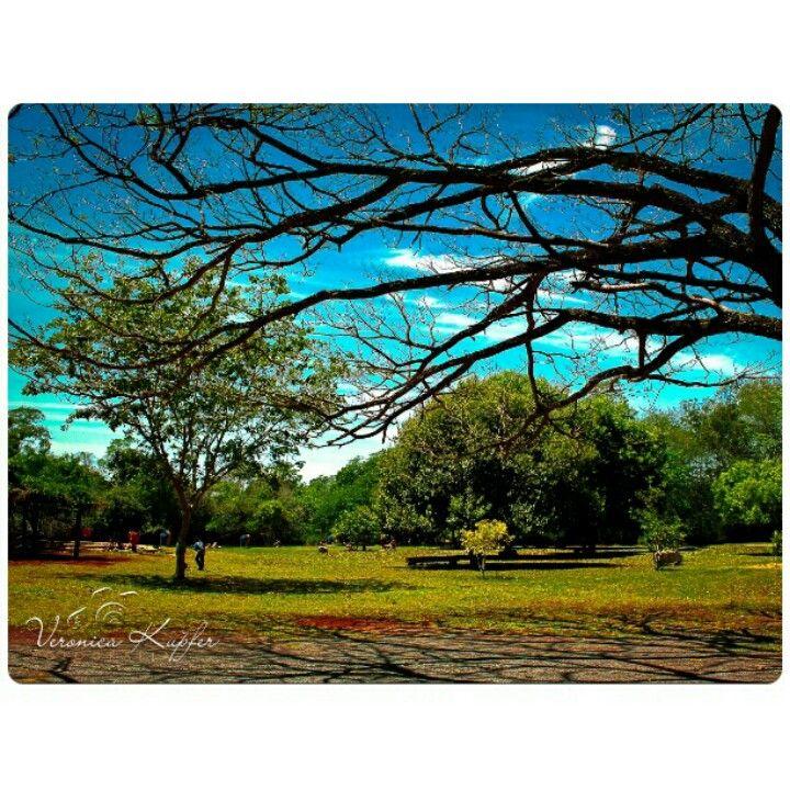 Balneario Municipal Dourados Ms Brasil Mato Mato Grosso Do